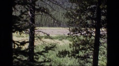 1973: backpackers walking across a field SCAPEGOAT WILDERNESS MONTANA Stock Footage