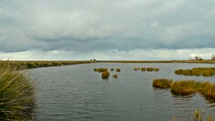 Kizilirmak Delta and the Bird Sanctuary wetlands Stock Footage