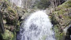 Strong water stream down waterfall in a lush green forest Stock Footage