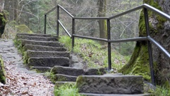 Stone stairs with railing, forest path in the mountains Stock Footage