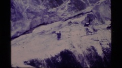 1977: birds roost on a rocky cliff and fly close to the surface of the water Stock Footage