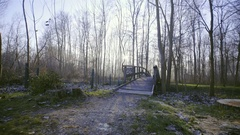 Person with dog walk over wooden bridge towards tall forest 4K Stock Footage