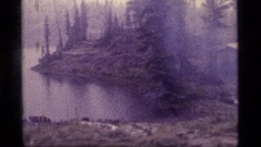 1977: a tiny cottage located next to a water body on a chilly morning SAPPHIRE Stock Footage