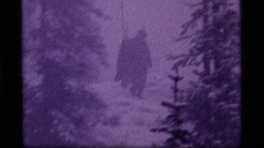 1977: person with a shovel walking downhill through woods in a blizzard SAPPHIRE Stock Footage