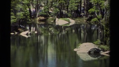 1978: tranquil pond reflects partly submerged gray rocks and surrounding green Stock Footage