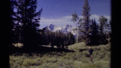 1979: a woman walking through a beautiful meadow set against snow  Stock Footage