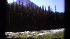 1979: river with forested bank on one side, and meadow on the other  Stock Footage