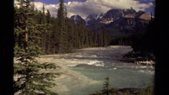 1979: fast flowing icy waters of a large stream set in a dense forest Stock Footage