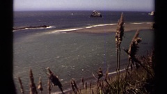 1980: a view from the coast with weed plants blowing in foreground MENDOCINO Stock Footage