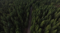 Aerial View of Forest With Deserted Road Stock Footage