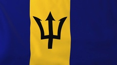 Flag of Barbados waving in the wind, seemless loop animation Stock Footage