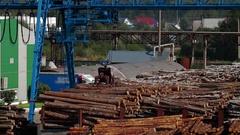 Modern lumber factory Stock Footage