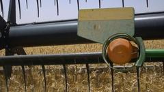 Combine harvester harvests ripe wheat. Stock Footage