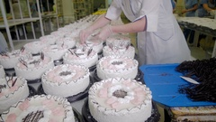 Cakes decorating. Workers decorating cakes at a cake factory. Confectionery Stock Footage
