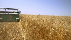 The season of harvest. Harvester in wheat fields. Stock Footage