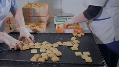 Production line. Workers packing food Stock Footage