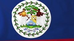 Flag of Belize waving in the wind, seemless loop animation Stock Footage