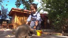 Child nurses a Pekinese dog with love Stock Footage
