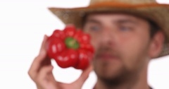 Farmer Man Red Pepper Show Presentation Closeup and Quality Inspection Checking Stock Footage
