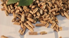 A pile of birch wooden pellets with green birch leaf Stock Footage