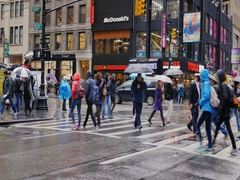 New York, USA - OKT, 2016: People with umbrellas from rain quickly go through Stock Footage