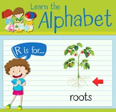 Flashcard letter R is for roots Stock Illustration