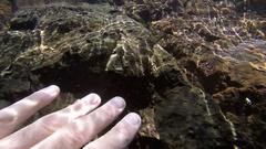 Whitsunday Island, Snorkeling, Rock Under Water Stock Footage