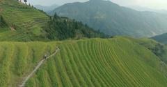 Peasant Going Along Longji Rice Terraced Fields Stock Footage