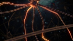 Brain Neuron Network- flying in the brain Stock Footage