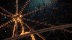 Brain Neuron Network-detail neuron on the right Stock Footage