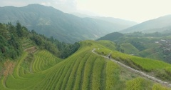 Peasant Going Along Longji Rice Terraced Fields Stock Footage