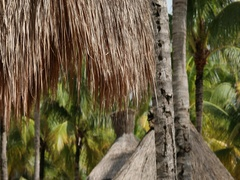Tropical resort Mexico thatched grass huts on beach DCI 4K Stock Footage