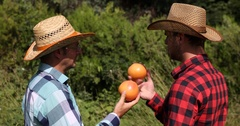Farmer Men Talking About Exotic Plantation Collaboration Holding Bio Grapefruits Stock Footage