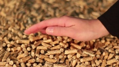 Hand testing a pile of birch wooden pellets Stock Footage