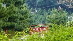 Cable car station of Yuchi bottom view behind pine trees Stock Footage