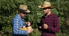 Farmer Men Cooperation Hold Examine Organic Bio Potato Talk Use Digital Tablet Stock Footage