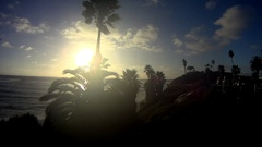 Sunset Through Palms SWAMIS Encinitas California Stock Footage