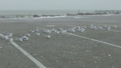 Snow and big waves as hurricane force winds blow Stock Footage