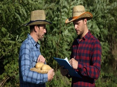Serious Farm Men Inspection Hold Organic Brown Potato Checking Writing Clipboard Stock Footage