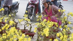 People buy and sell hoa mai trees on Tet Eve in the downtown Stock Footage