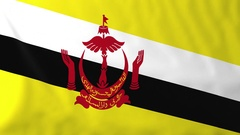Flag of Brunei waving in the wind, seemless loop animation Stock Footage