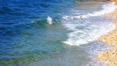Waves of the Black Sea coastal stones rocky shore. Crimea. Stock Footage