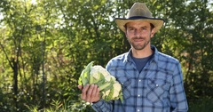 Serious Farmer Man Presentation Hold White Cauliflower Show Camera Thumb Up Sign Stock Footage