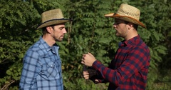 Confident Gardener Men Cooperation Hold Cucumbers Verify Quality Control Talking Stock Footage