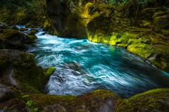 Blue stream and Fern covered Canyon Above Toketee Falls Douglas County Oregon Stock Photos