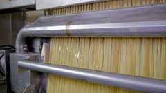 Production of pasta on a modern production line Stock Footage