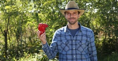 Successful Rancher Man Holding Red Pepper from Organic Garden Show Thumb Up Sign Stock Footage