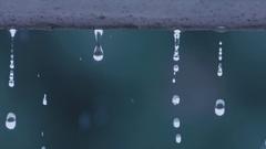 Rain water droplets falling in slow motion Stock Footage