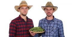 Handsome Farmer Men Team Hold Organic Green Bean Looking Camera Posing Serious Stock Footage