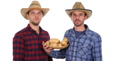 Farmer Men Hold Show Organic Brown Potatoes Thumb Up Sign Great Quality Harvest Stock Footage